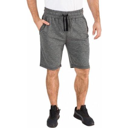 Pánské šortky SAM 73 šedé