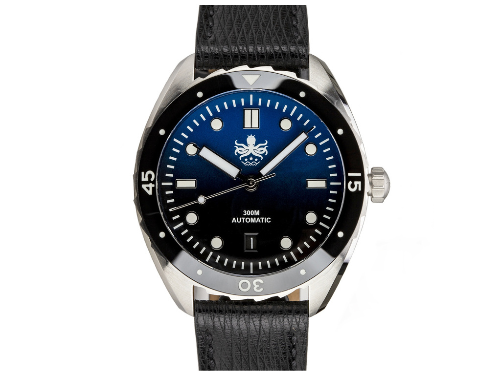 Eagle Blue Black 1