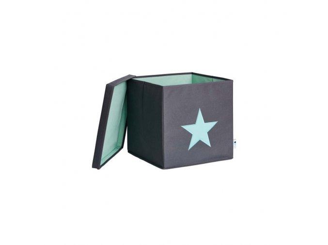 šedá s hvězdou mint1