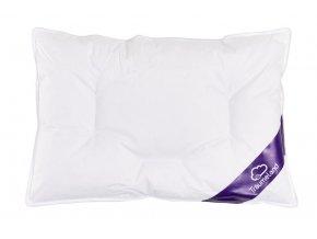 Daunentraum Kissen cushion