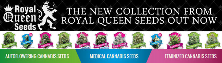 Royal-Queen-Seeds-Complete-Collection