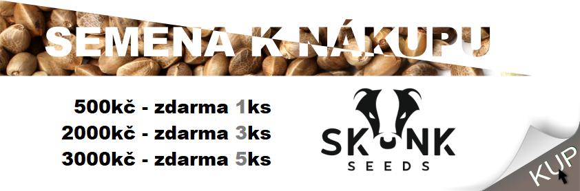 skunk_s_1
