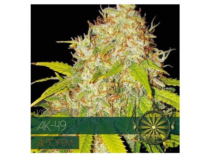 autofem vision seeds ak 491