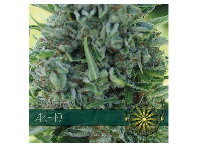 vision seeds ak 49