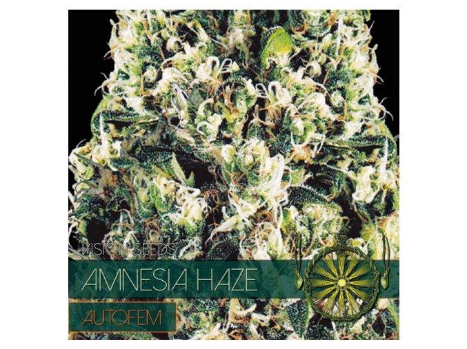 autofem vision seeds amnesia haze