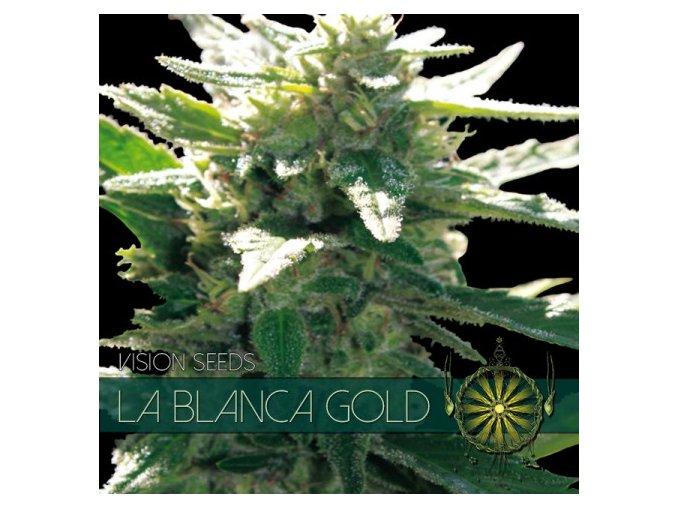 vision seeds la blanca gold