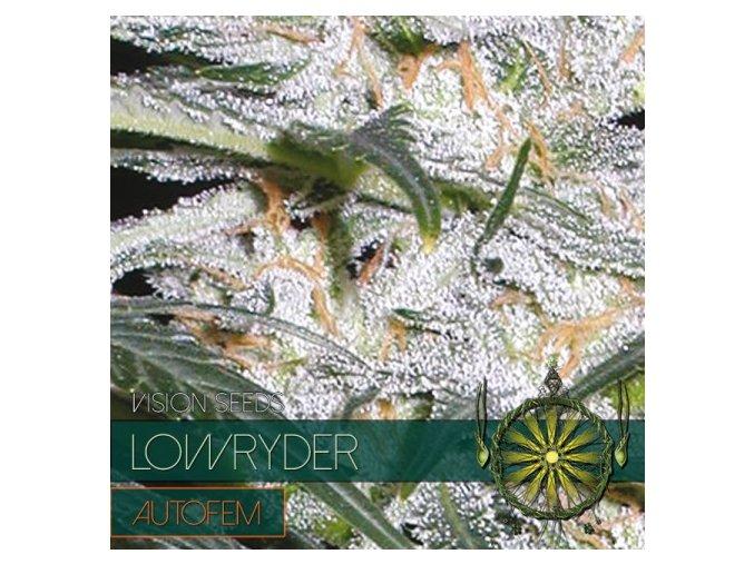 autofem vision seeds lowryder