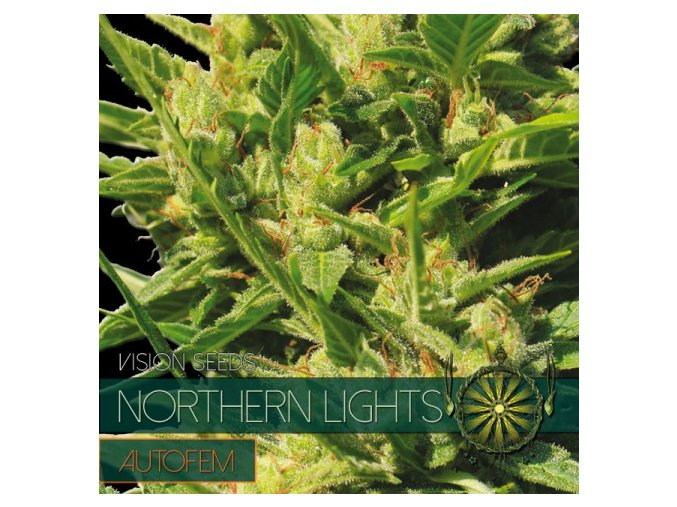 autofem vision seeds northern lights