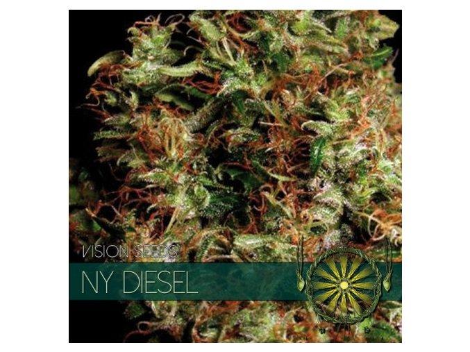 vision seeds ny diesel