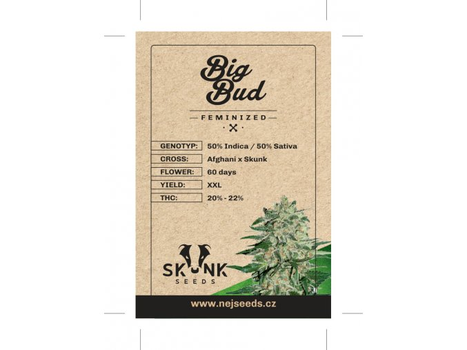 skunk seeds big bud