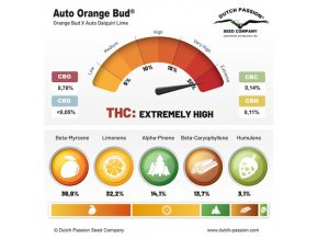 Auto Orange bud Dutch Passion SPRING