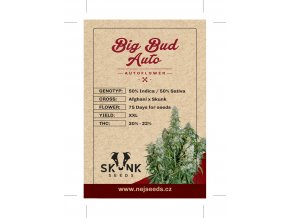 skunk seeds big bud auto