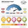 cbd charlottes angel terpenes and cannabinoids dutch passion cannabis seed company 1