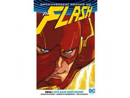 Flash 1: Když blesk udeří dvakrát (Znovuzrození hrdinů DC)