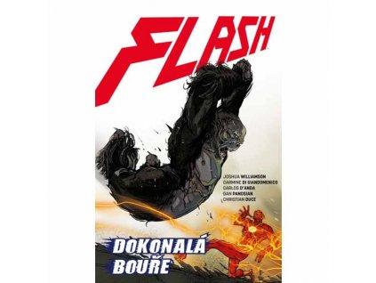 Flash 7: Dokonalá bouře (Znovuzrození hrdinů DC)