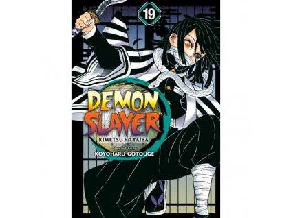 Demon Slayer: Kimetsu no Yaiba 19