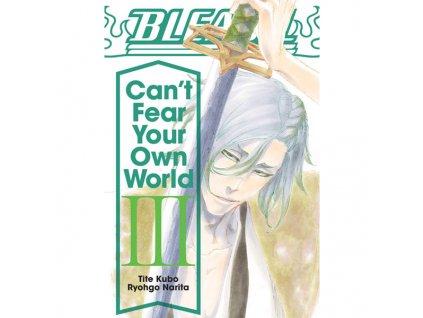 bleach can t fear your own world 03 light novel 9781974713288