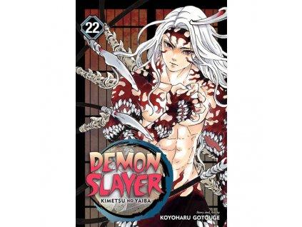 demon slayer kimetsu no yaiba 22 9781974723416