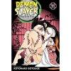 Demon Slayer: Kimetsu no Yaiba 11