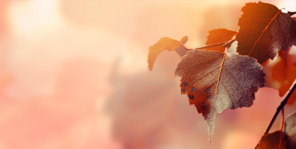 Hurá! Vítej podzime aneb Jak si užít babí léto
