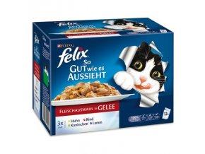 Felix masový výběr (kuře, hovězí, králík, jehněčí) v želé 12 x 100 g