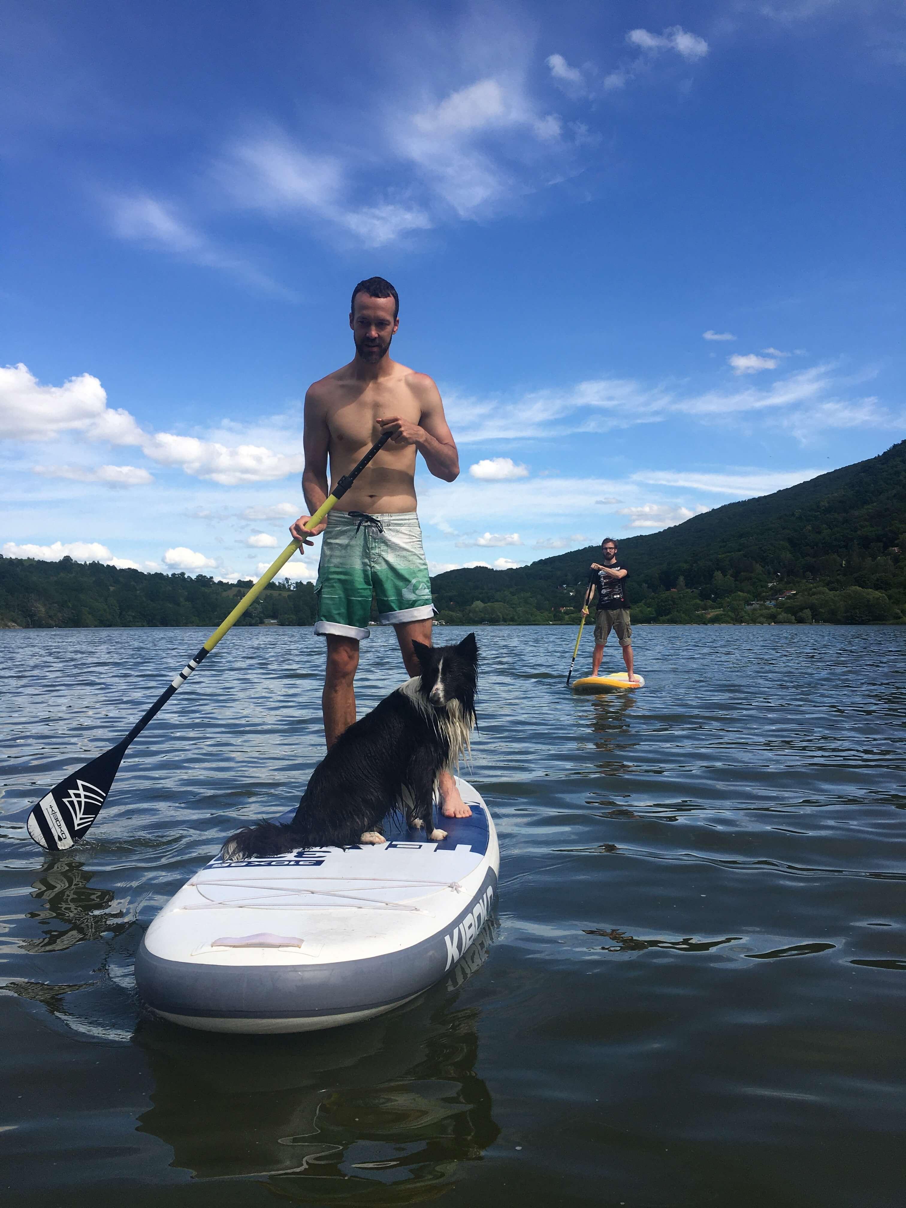 pes-na-paddleboarde