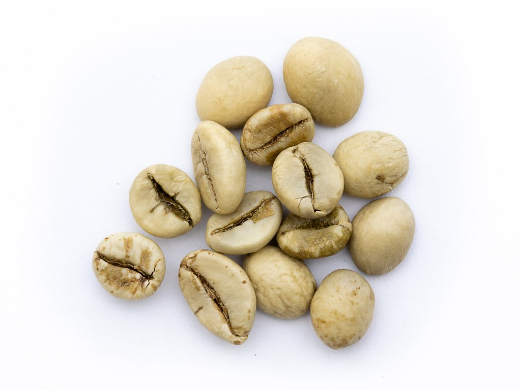 robusta moonsooned0098