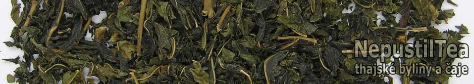 P1010266_NepustilTea.cz_mullberry_green_tea_morusovnik_b_01