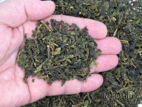 P1010258 NepustilTea.cz mullberry green tea morusovnik a 01