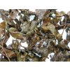 P9220051 NepustilTea.cz thai gabaron tea a 032