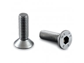 Imbusový šroub M8 x 25 mm, AISI 304