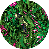 green_mystery-171x172-nobckgr