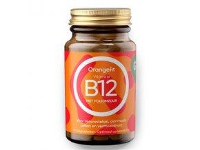 Vitamine B12 with Folic Acid 90 pastilek