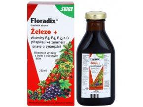 Salus Floradix 250 ml - bezlepkový