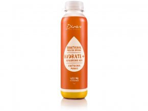 Diva's Melon drink - CANTALOUPE 400ml