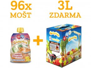 AKCE mix ovocňák mošty 250ml 8kt (96 ks) + 3l Mošt jablko rakytník ZDARMA