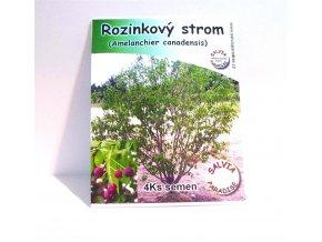 Rozinkový strom - Amelanchierova borůvka semena 4 Ks