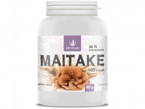 Maitake kapsle 100 cps