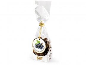 Černý rybíz v čokoládě - dárkový sáček 100 g