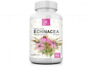 Echinacea bylinný extrakt 60 cps.