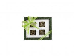 Asteria zelena - set kvetoucich caju
