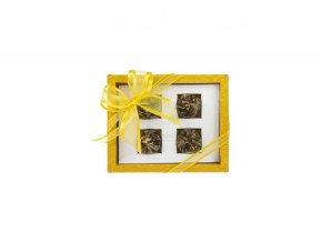 Asteria zluta - set kvetoucich caju