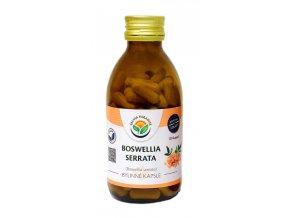 Boswellia serrata - kadidlovník kapsle