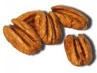 Lifefood Pekanové ořechy BIO jádra 1kg