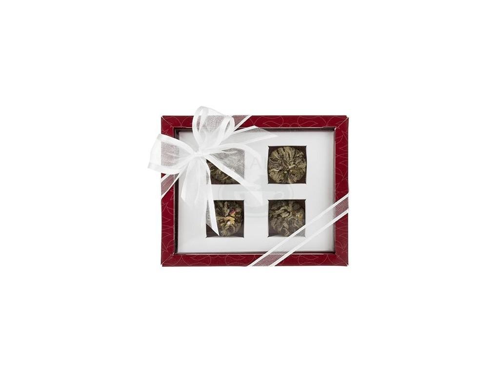 OXALIS Asteria červená - set kvetoucích čajů