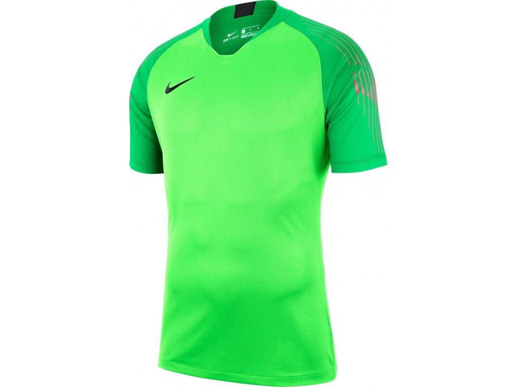 Brankářský dres Nike Gardien