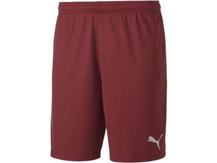 Dětské trenky Puma teamGOAL 23 (Velikost 116, BARVA vínová, Délka nohavice šortky)
