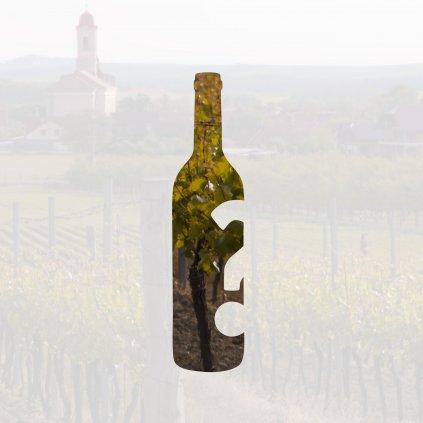 The best of vinaři