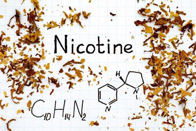 Vše, co jste chtěli vědět o nikotinu