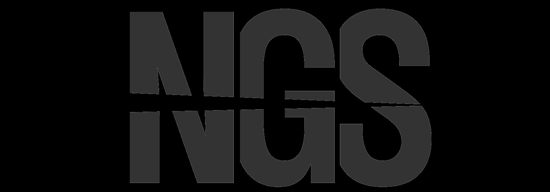 logo Night Gear Solutions